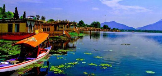 Dal lake Kashmir